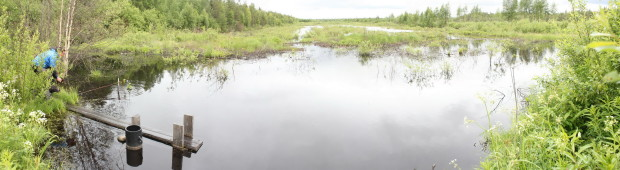 Aquatic macroinvertebrate activity trapping, Lampsisuo5b2, LIFE Return of Rural Wetlands, photo Juha Siekkinen 16.6.2014