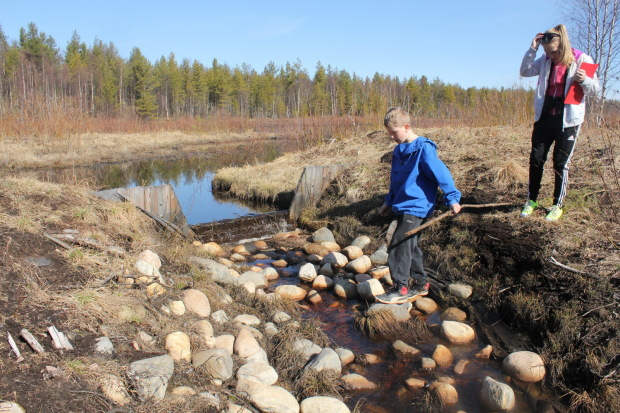 Lampsisuo wetland Kajaani Finland, northern site, installed open flow straight drops 2, Life Return of Rural Wetlands, photo Juha Siekkinen 24.4.2013