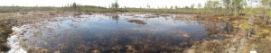 Lammenneva wetland, western site after restoration, photo Juha Siekkinen 22.4.2013