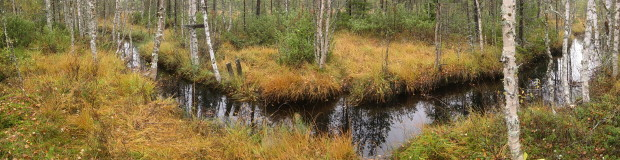 Latvalampi wetland Suomussalmi, the place of water control structure, before construction, photo Juha Siekkinen 21.9.2011