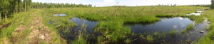 Pikku Nuoluanjärvi wetland, southern site, after wetland creation, photo Juha Siekkinen 8.7.2013