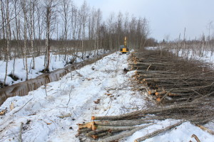 Pikku Nuoluanjärvi wetland, timber harvesting with felling head2, photo Juha Siekkinen 12.4.2012