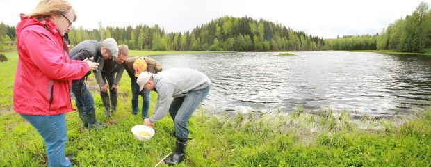 Vitikankorpi wetland, aquatic invertebrate trapping, Hämeenlinna Finland, photo Juha Siekkinen 3.6.2015 resized